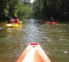 Kayaking, Chestatee, GA