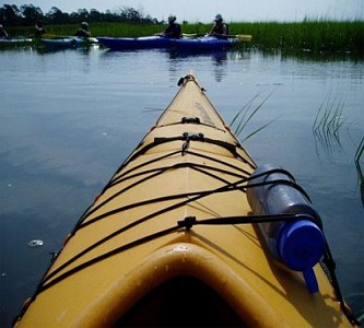 Marsh Kayaking, Savannah, GA